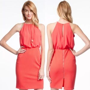 Coral Orange Pencil Skirt Dress by She & Sky